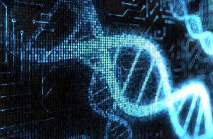 DNA Computers