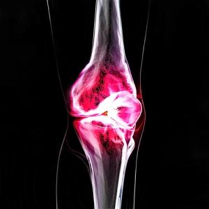 shutterstock_102215590 - Regenerative Medicine